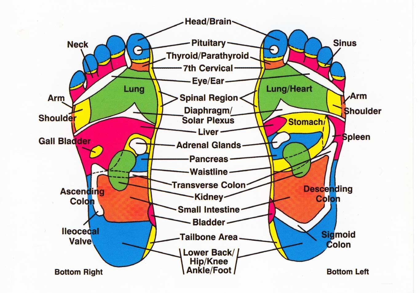 charlotte chinese foot reflexology